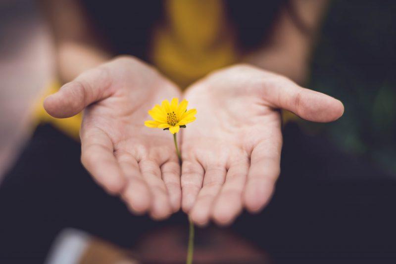 Cuando perdonas, te liberas