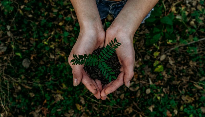 Es tiempo de cuidar el medio ambiente